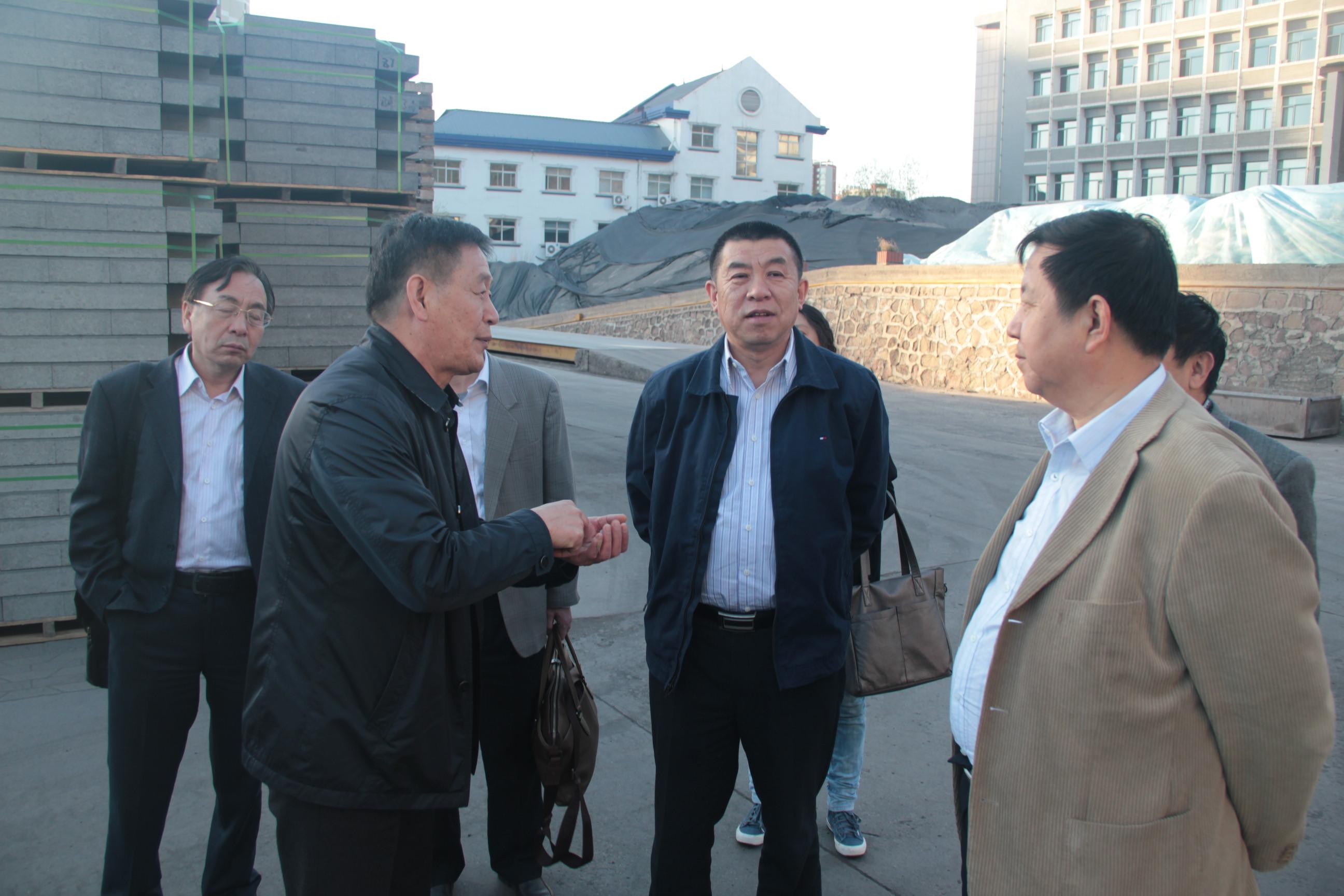 2017中國建筑材料企業管理協會領導來公司視察